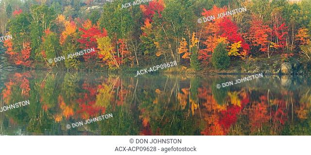 Autumn colours in hardwood forest reflected in Simon Lake Conservation Area, Naughton, Ontario, Canada