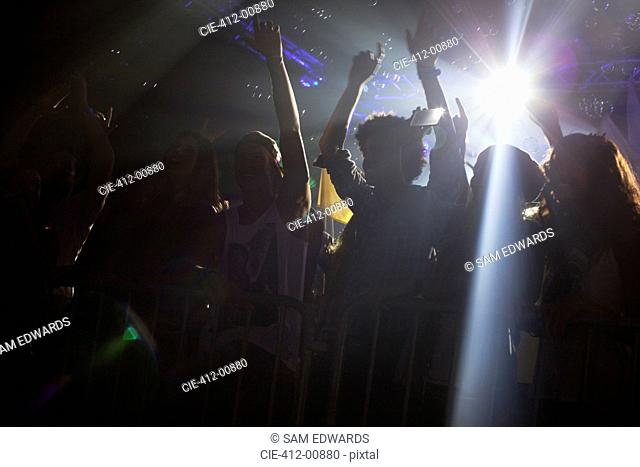 Spotlight above silhouette of crowd cheering at concert
