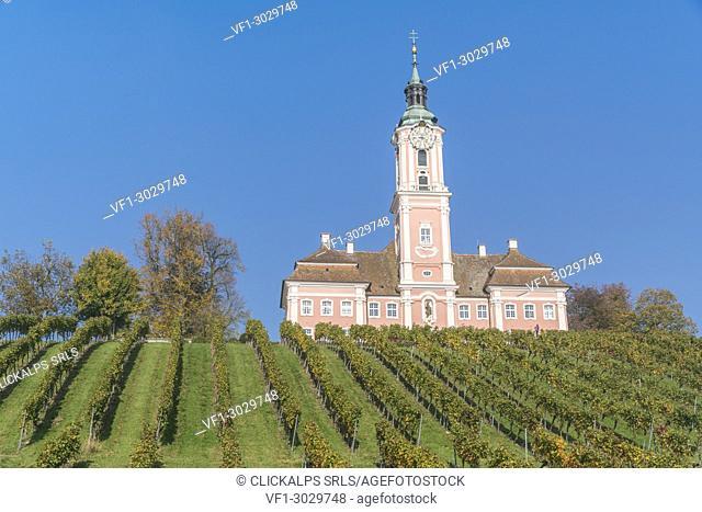 Birnau sanctuary and vineyards from below. Uhldingen-Mühlhofen, Baden-Württemberg, Germany