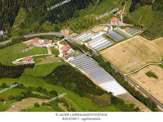 Greenhouses, Nuarbe, Azpeitia, Guipuzcoa, Basque Country, Spain