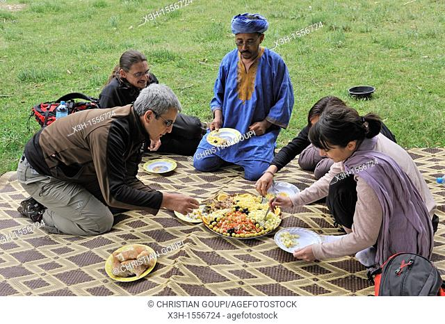 lunch picnic in a clearing, Atlas cedar forest, near Azrou, Middle Atlas, Morocco, North Africa
