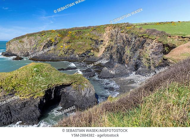Aber Draw seen from Wales Coast Path near Trefin, Pembrokeshire Coast National Park,Wales, United Kingdom, Europe