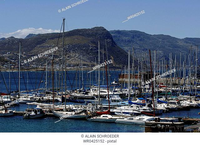 Boats moored at a harbor, Simons Town, Cape Town, Western Cape Province, South Africa