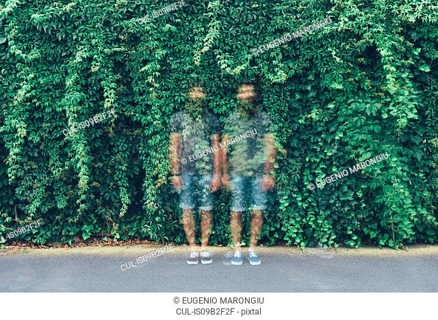 Double exposure portrait of transparent identical adult male twins and green foliage