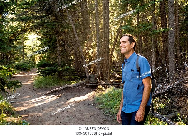 Happy senior male hiker in forest, Canmore, Alberta, Canada