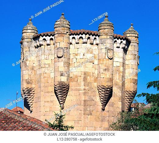 Torre del Clavero. Salamanca. Spain