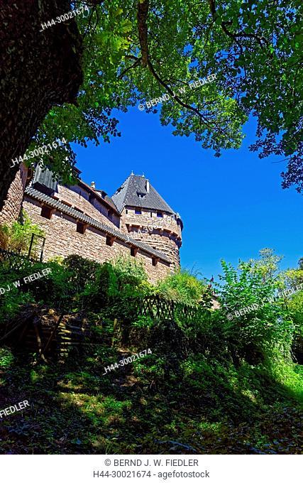 Château du Haut Königsbourg