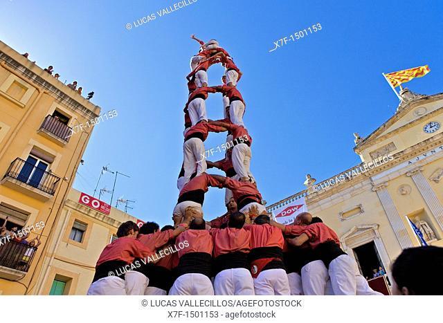 Colla Vella dels Xiquets de Valls 'Castellers' building human tower, a Catalan tradition Festa de Santa Tecla, city festival  Plaça de les Cols Tarragona, Spain