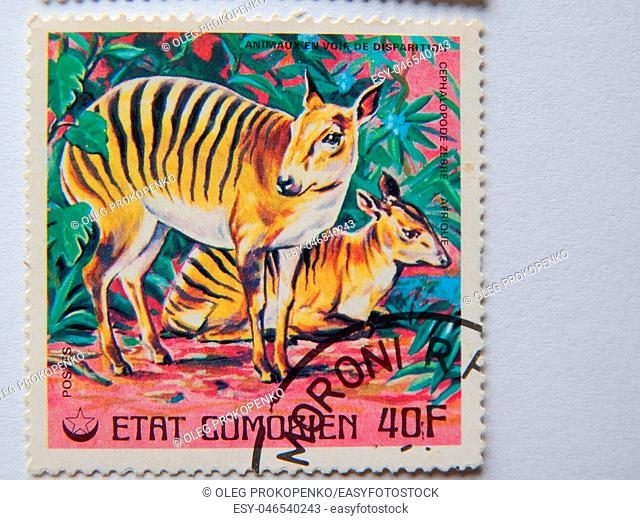 KIEV, UKRAINE: Collection of postage stamps with animals