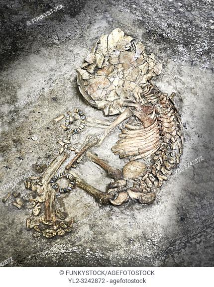 Infant burial. the infant was buried in a foetal position and has stone wrist bands. The brown area on the left side of the skeleton is the remains of the...