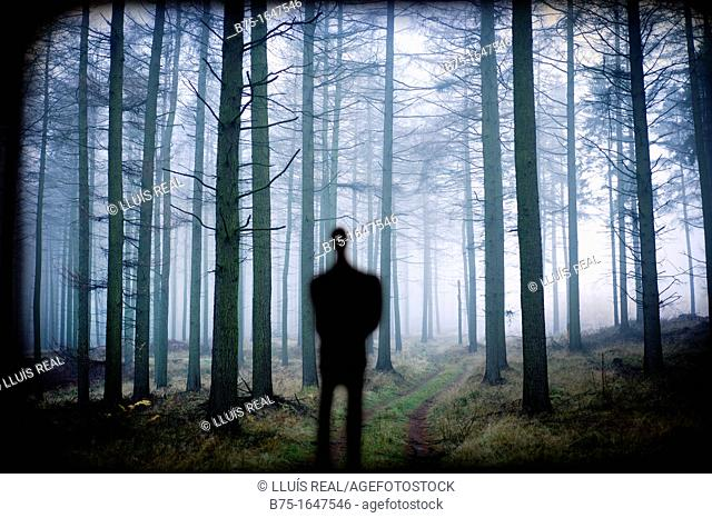 man silhouette in the forest, inspiration
