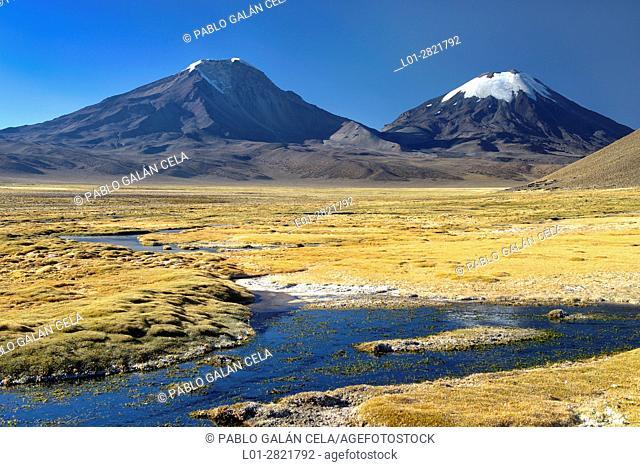 Parinacota (6342 m, right) and Pomerape (6286 m, left) volcanoes from Chungara lake. Lauca National Park. Norte Grande region. Chile