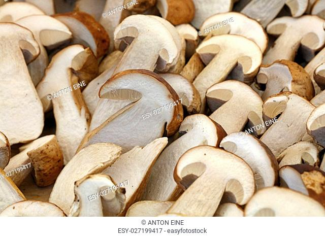 Fresh autumn season halved cut porcini mushrooms (ceps, Boletus edulis) on retail farmers market, close up, high angle view