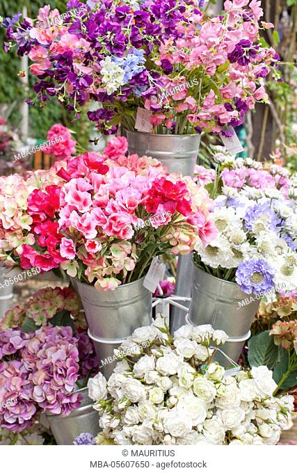 Garden of the painter Claude Monet