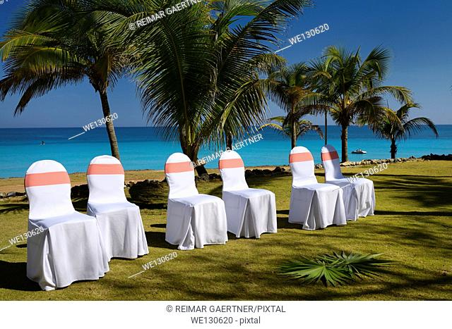 Coconut palm trees and decorated reception chairs on the shore of Varadero Cuba Beach resort