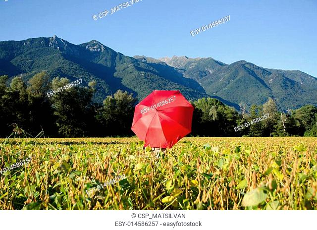 Red umbrella on the field with the mountains in the background