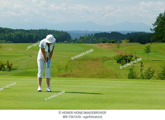 Female golfer on a golf course, Pleiskirchen, Altoetting, Upper Bavaria, Bavaria, Germany, Europe