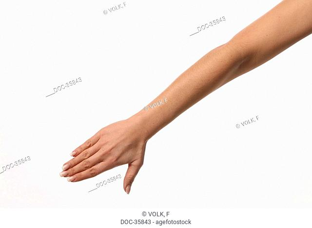 Female arm in front of white background