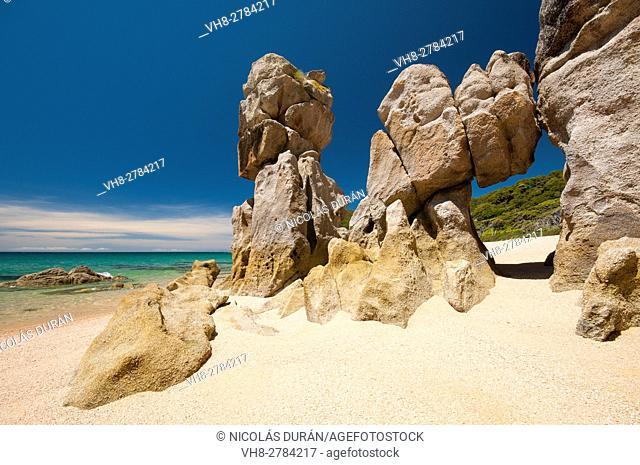 Beach in Abel Tasman National Park, New Zealand