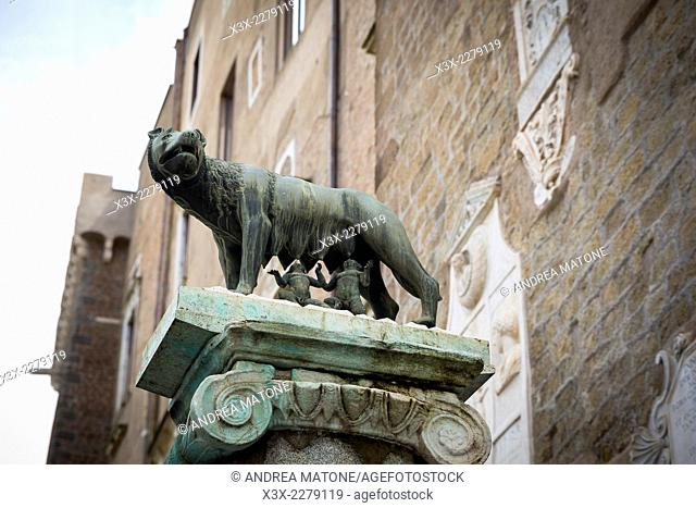 Statue of Romulus and Remus and the she wolf. Piazza del Campidoglio. Rome, Italy