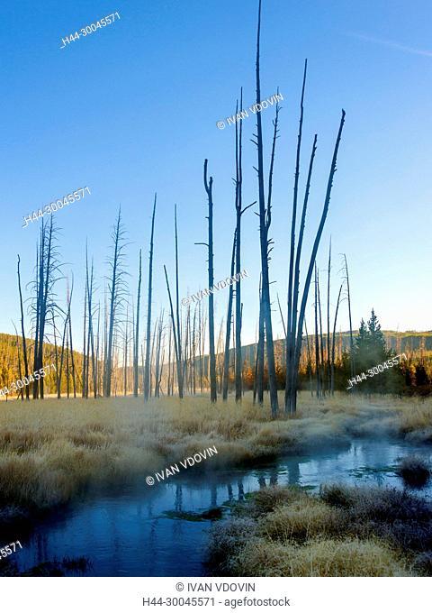 Obsidian Creek, Yellowstone National Park, USA