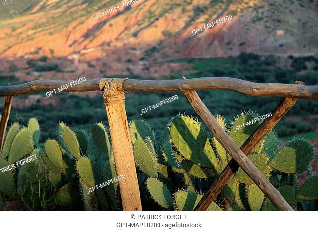 WOOD FENCE MADE FROM NATURAL MATERIALS, TERRES D'AMANAR, TAHANAOUTE, AL HAOUZ, MOROCCO