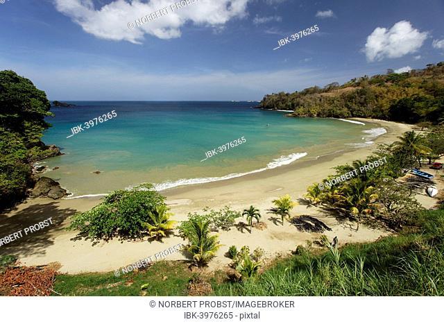 Beach, lagoon, Bloody Bay, Trinidad and Tobago