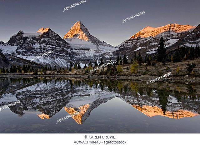 Mount Assiniboine with Alpenglow reflected in a tarn, Mount Assiniboine Provincial Park, British Columbia, Canada
