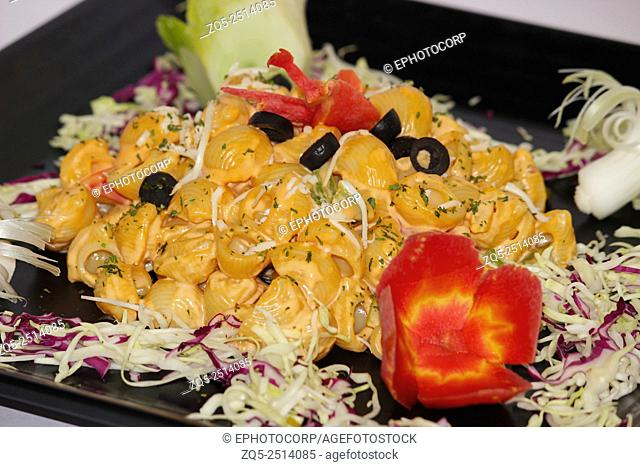 Pasta with vegetable salad, Pune, Maharashtra, India