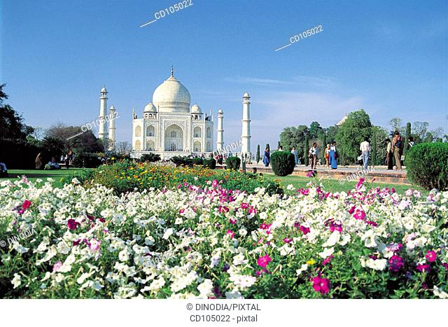 Taj Mahal. Agra. Uttar Pradesh, India