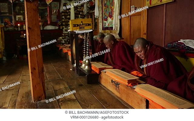 Nepal Himalayas Buddhist nuns at the Kharigandentenphelling Monastery in the village of Thamo Solukhumbu Mt Everest reading prayers Tibetan scriptures in remote...