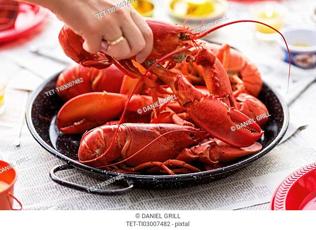 Person taking lobster from plate