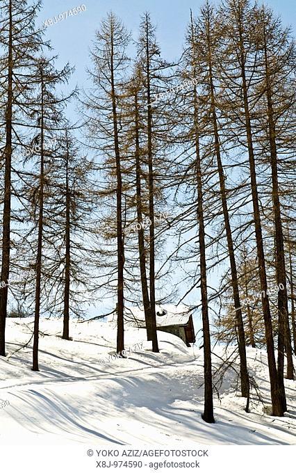 Chamois Aosta, Italy