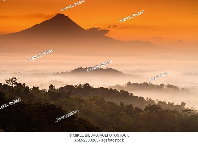 Jungle landscape at dawn near Borobudur buddhist temple. Magelang, Java. Indonesia, Asia