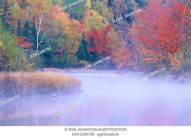 Autumn colour along the shore of the Junction Creek, Greater Sudbury, Ontario, Canada