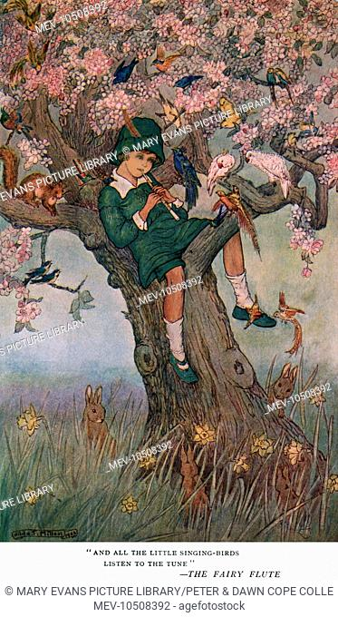 And all the little singing birds listen to the tune (The Fairy Flute)