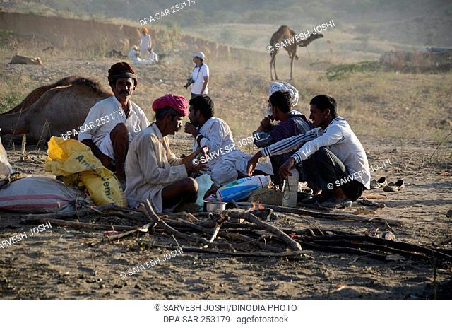 People making tea, pushkar fair, rajasthan, india, asia