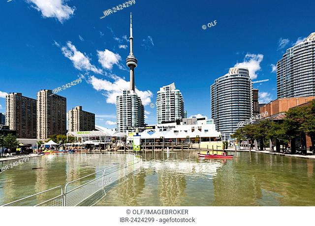 Harbourfront Centre, CN Tower, Toronto, province of Ontario, Canada, North America