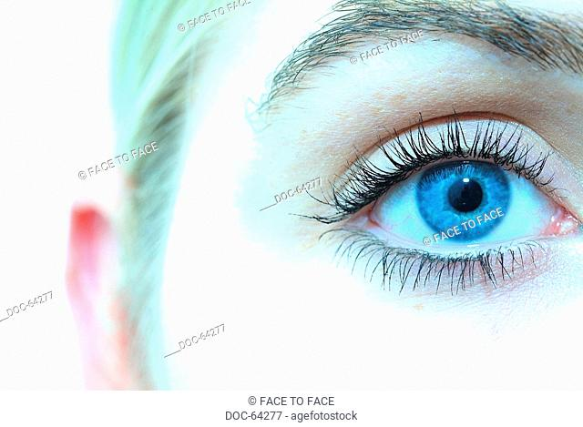 detailed - a blue eye of a young adult woman