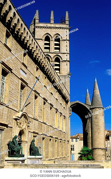 The Medicinal Faculty And Cathedral Saint Pierre, Montpellier,Herault,France