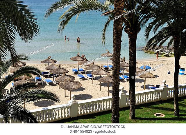 View of a beach with palm trees and parasols cane in Palma de Mallorca
