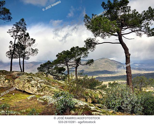 Sierra de Gredos from the Piquillo. Cadalso de los Vidrios. Madrid. Spain. Europe