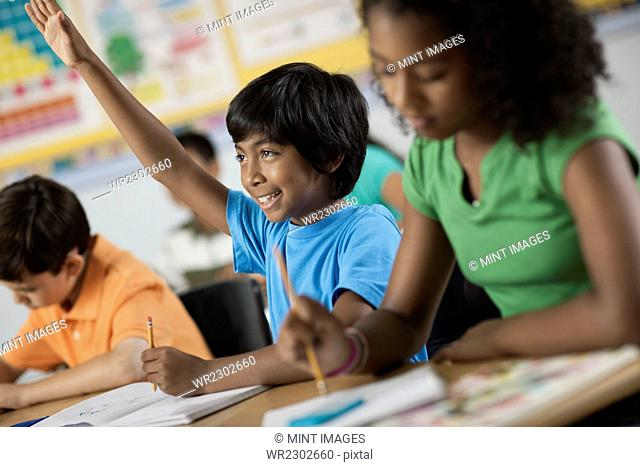 A group of young girls and boys in a classroom, classmates. A boy with his hand raised