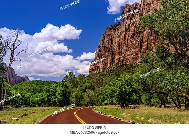 The USA, Utah, Washington county, Springdale, Zion National Park, Zion canyon, Scenic drive close Zion lodge