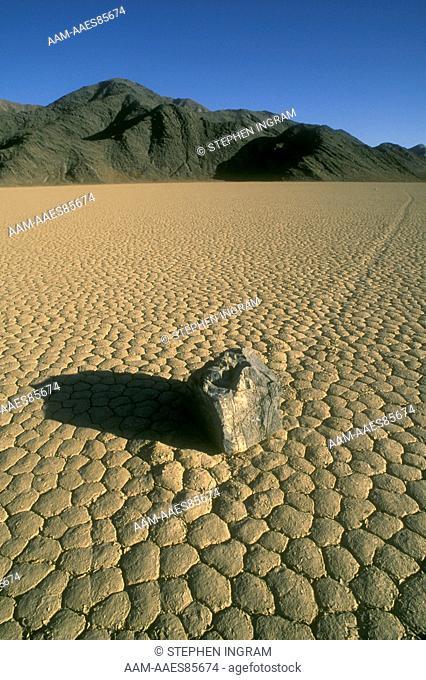 Death Valley N.M.: Limestone Rock w/ Track across Playa, The Racetrack, CA