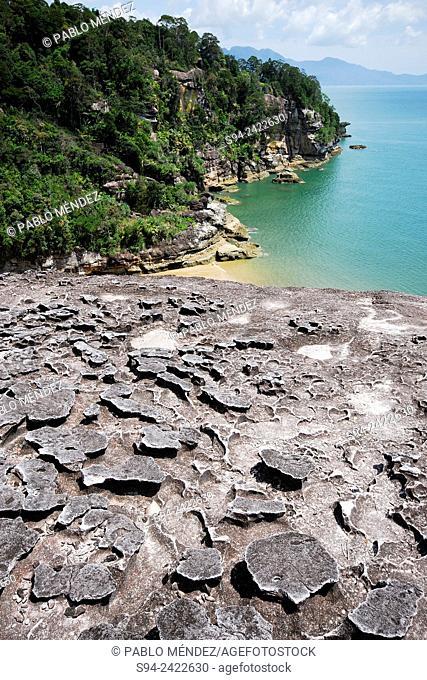 Beach of Telok Pandan in Bako national park, Sarawak, Malaysia, Borneo