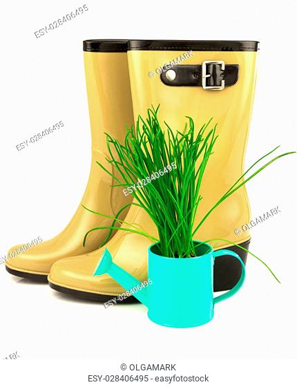 Rubber yellow boots with spring grass in the blue watering can isolated on white background