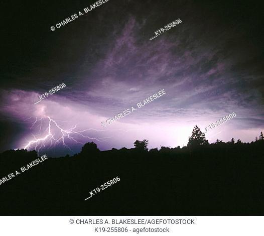 Lightening across the night in Lummi Island. Whatcom County. Washington. USA