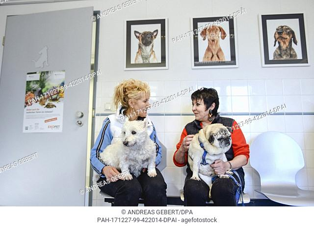 Brigitte Moser with her dog Stupsi(L) and Uschi Ackermann with Sir Henry sit in the waiting room during consultation hours for dog and cat owners in the animal...