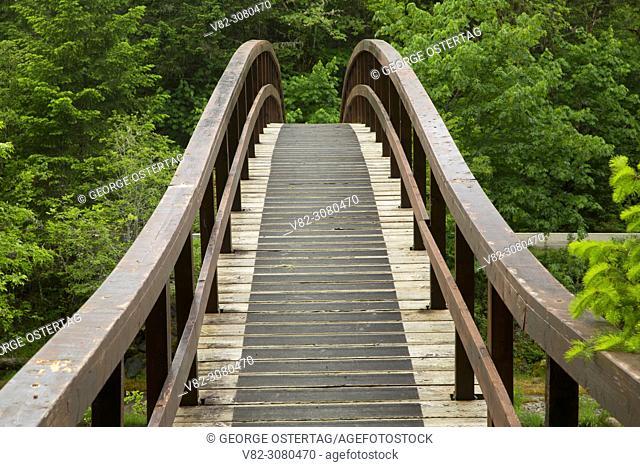Hiker bridge over Little River on the Wolf Creek Falls Trail, Roseburg District Bureau of Land Management, Oregon